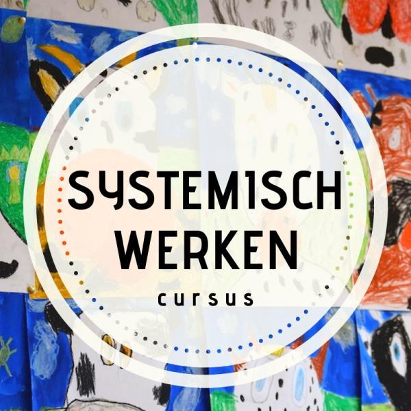 Cursus systemisch werken