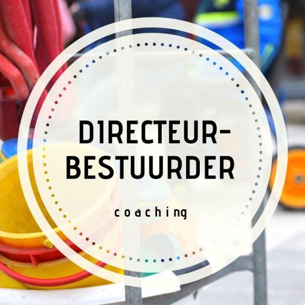Directeur-bestuurder
