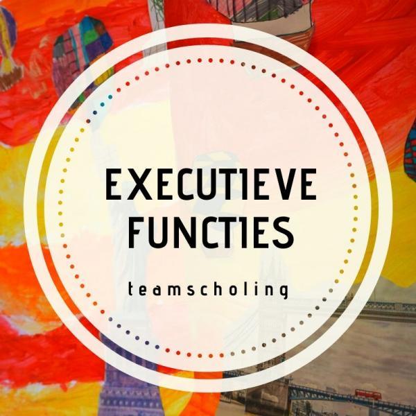 Teamscholing, Executieve functies