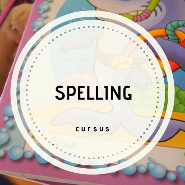 Teamscholing/ workshop spelling