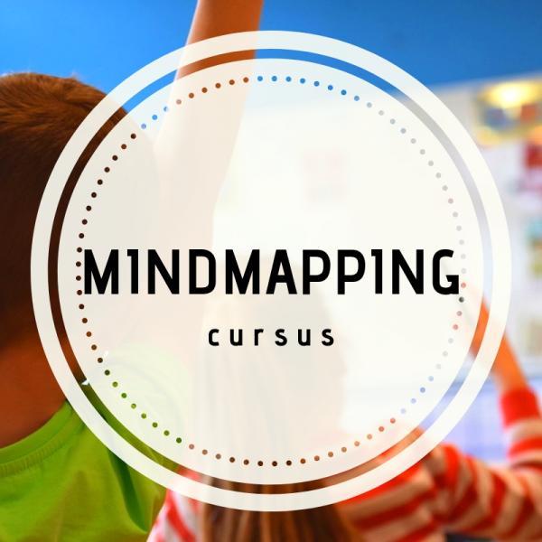 Cursus mindmappen voor groep 7 en 8