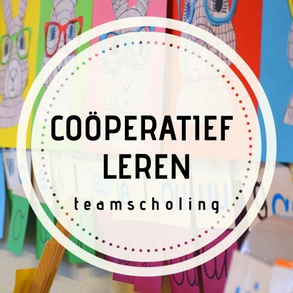 Teamscholing coöperatief leren
