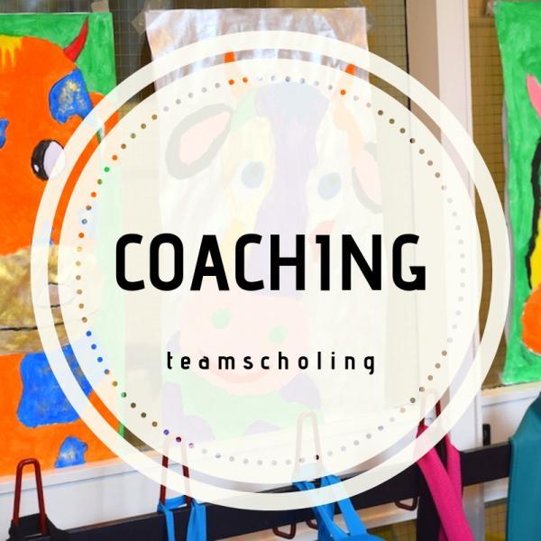 Teamscholing coaching
