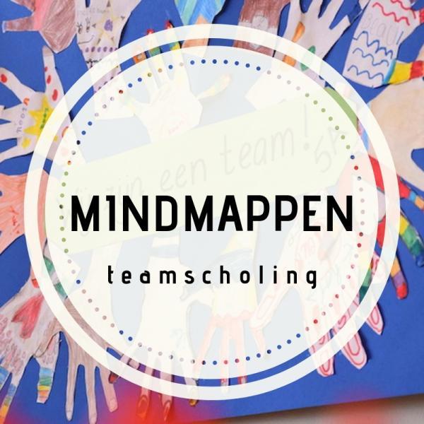 Teamscholing mindmappen