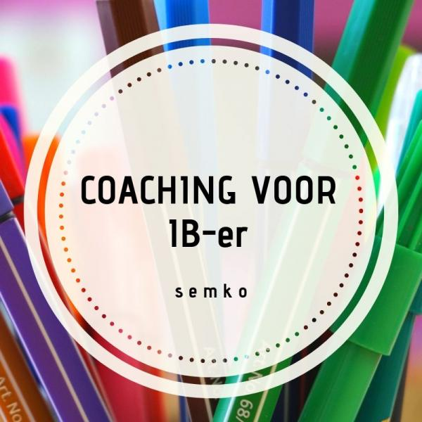 coaching intern begeleider